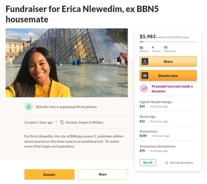 Erica-nlewedim-bbnaija-gofundme